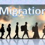 فضای ترس و وحشت: محیط، مهاجرت و امنیت